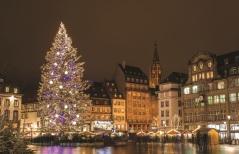 118_Strasbourg, Christmas tree SS - 120848623